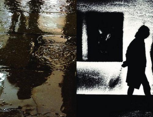 Geslaagde opening tentoonstelling 'Trio's en Triptieken'